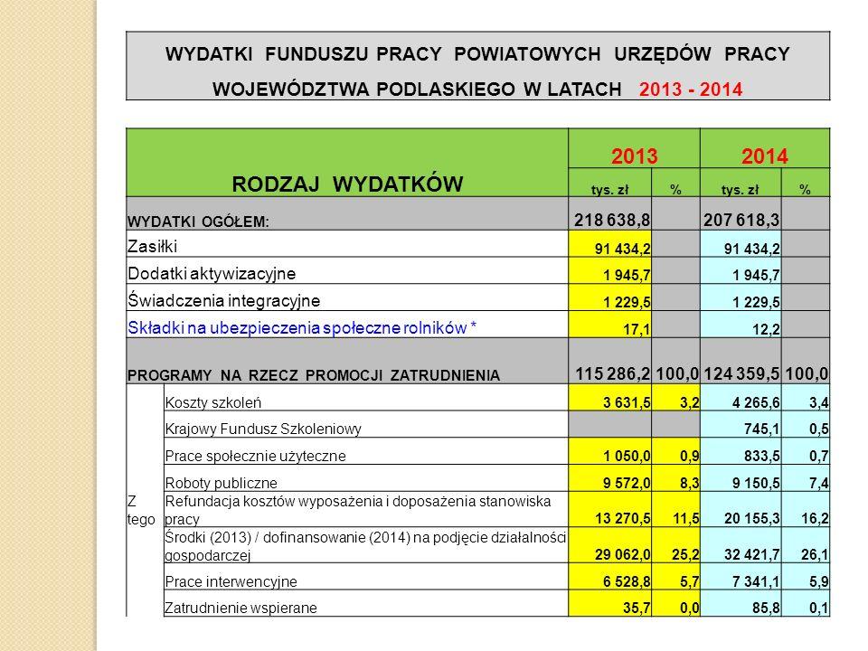 WYDATKI FUNDUSZU PRACY POWIATOWYCH URZĘDÓW PRACY WOJEWÓDZTWA PODLASKIEGO W LATACH 2013 - 2014 RODZAJ WYDATKÓW 20132014 tys. zł% % WYDATKI OGÓŁEM: 218