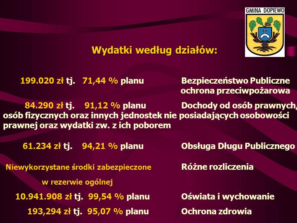 Wydatki według działów: 199.020 zł tj.