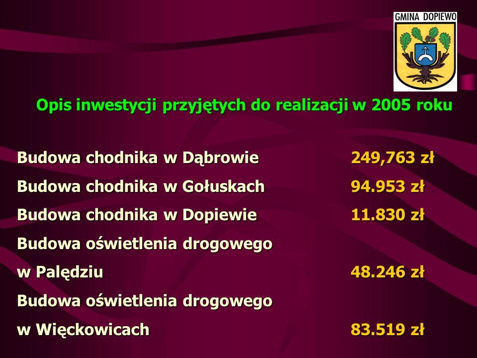 Opis inwestycji przyjętych do realizacji w 2005 roku Budowa chodnika w Dąbrowie 249,763 zł Budowa chodnika w Gołuskach94.953 zł Budowa chodnika w Dopiewie11.830 zł Budowa oświetlenia drogowego w Palędziu48.246 zł Budowa oświetlenia drogowego w Więckowicach83.519 zł