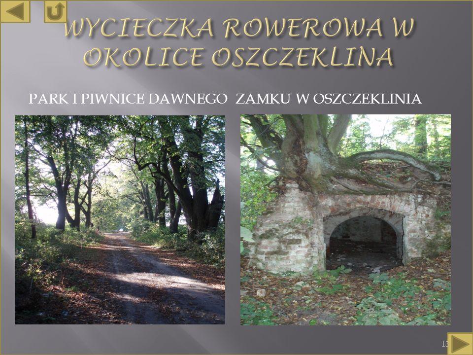 PARK I PIWNICE DAWNEGO ZAMKU W OSZCZEKLINIA 13