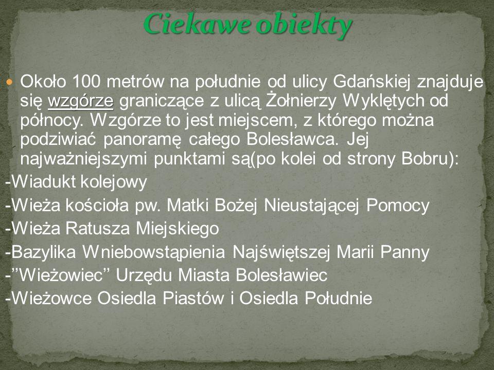 wzgórze Około 100 metrów na południe od ulicy Gdańskiej znajduje się wzgórze graniczące z ulicą Żołnierzy Wyklętych od północy.