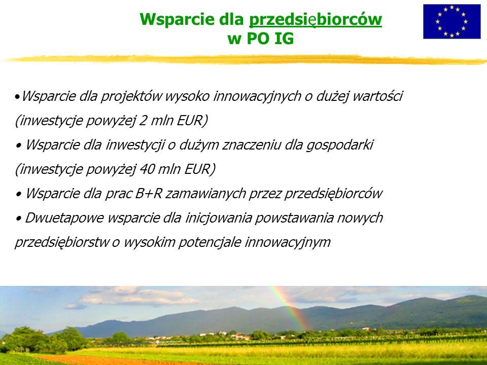 Wsparcie dla projektów wysoko innowacyjnych o dużej wartości (inwestycje powyżej 2 mln EUR) Wsparcie dla inwestycji o dużym znaczeniu dla gospodarki (inwestycje powyżej 40 mln EUR) Wsparcie dla prac B+R zamawianych przez przedsiębiorców Dwuetapowe wsparcie dla inicjowania powstawania nowych przedsiębiorstw o wysokim potencjale innowacyjnym Wsparcie dla przedsiębiorców w PO IG