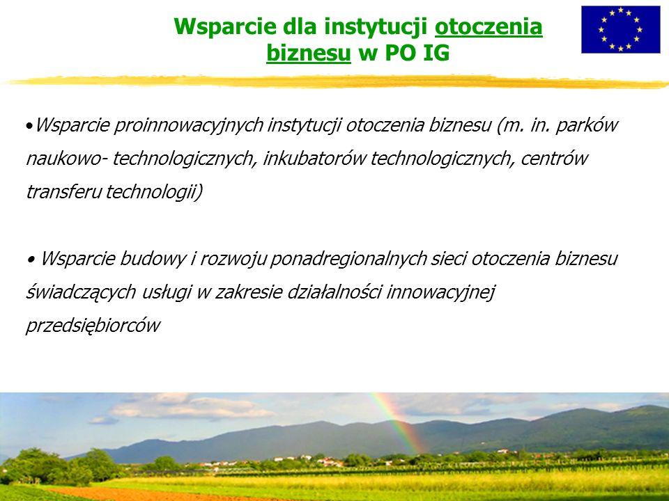 Wsparcie proinnowacyjnych instytucji otoczenia biznesu (m.