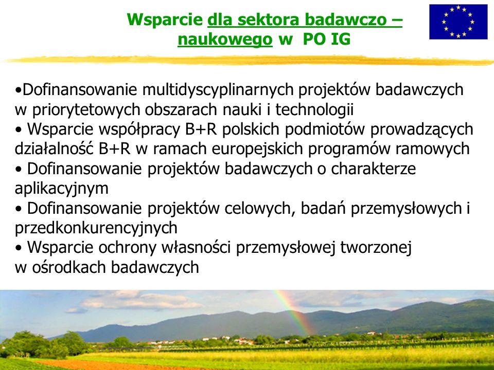 Wsparcie dla sektora badawczo – naukowego w PO IG Dofinansowanie multidyscyplinarnych projektów badawczych w priorytetowych obszarach nauki i technologii Wsparcie współpracy B+R polskich podmiotów prowadzących działalność B+R w ramach europejskich programów ramowych Dofinansowanie projektów badawczych o charakterze aplikacyjnym Dofinansowanie projektów celowych, badań przemysłowych i przedkonkurencyjnych Wsparcie ochrony własności przemysłowej tworzonej w ośrodkach badawczych
