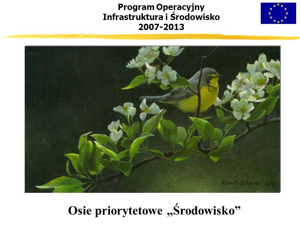 """Program Operacyjny Infrastruktura i Środowisko 2007-2013 Osie priorytetowe """"Środowisko"""