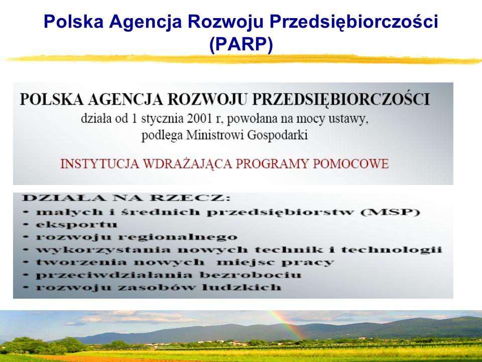 Polska Agencja Rozwoju Przedsiębiorczości (PARP)