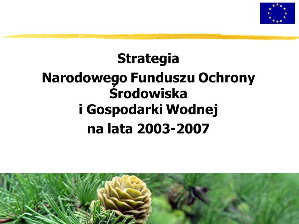 Strategia Narodowego Funduszu Ochrony Środowiska i Gospodarki Wodnej na lata 2003-2007