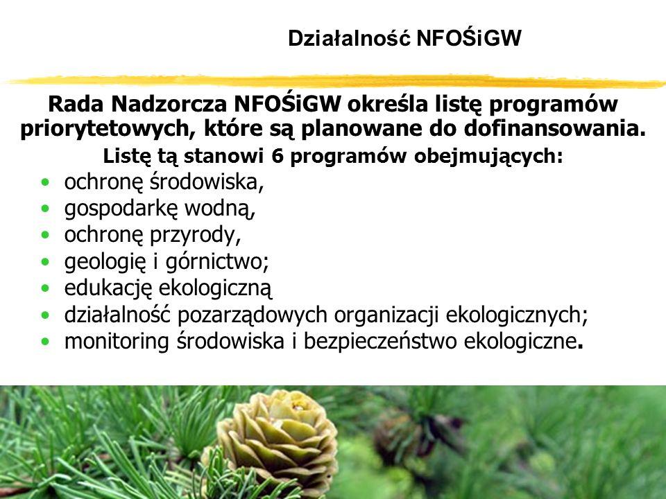 Działalność NFOŚiGW Rada Nadzorcza NFOŚiGW określa listę programów priorytetowych, które są planowane do dofinansowania.