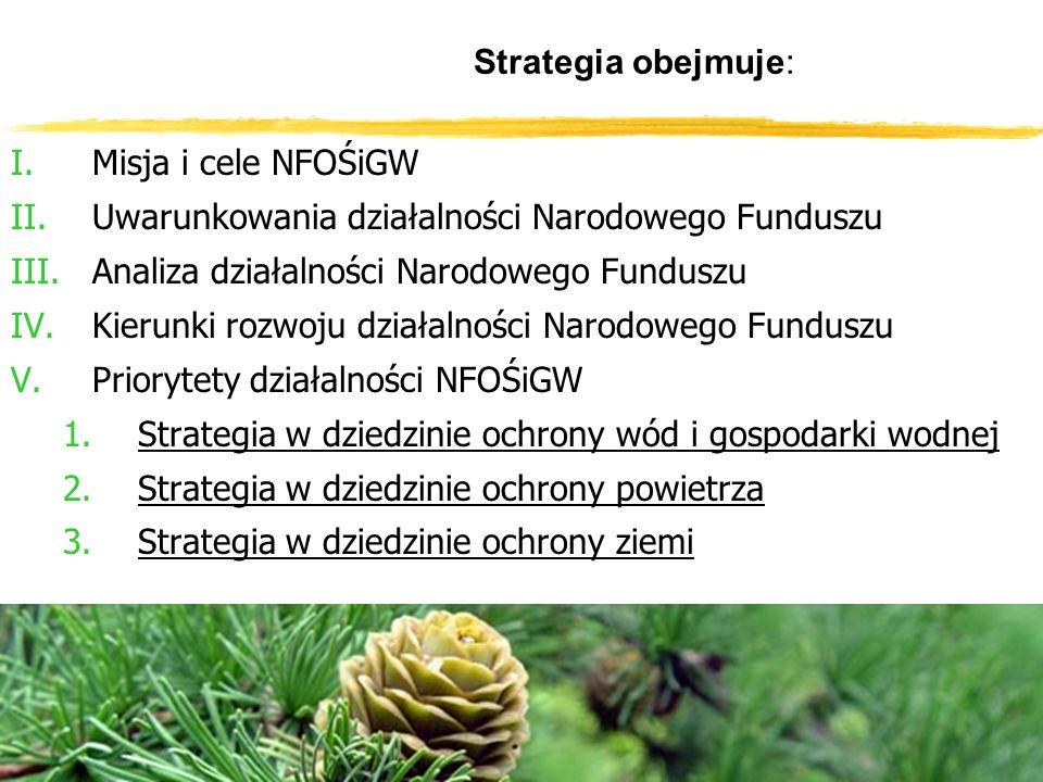 Strategia obejmuje: I.Misja i cele NFOŚiGW II.Uwarunkowania działalności Narodowego Funduszu III.Analiza działalności Narodowego Funduszu IV.Kierunki rozwoju działalności Narodowego Funduszu V.Priorytety działalności NFOŚiGW 1.Strategia w dziedzinie ochrony wód i gospodarki wodnej 2.Strategia w dziedzinie ochrony powietrza 3.Strategia w dziedzinie ochrony ziemi