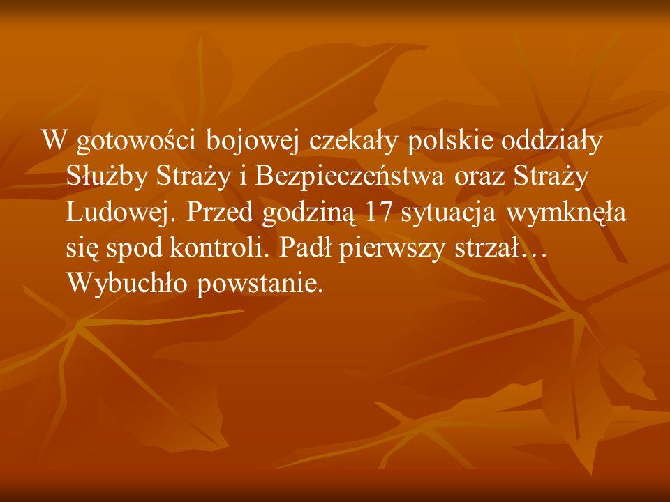 W gotowości bojowej czekały polskie oddziały Służby Straży i Bezpieczeństwa oraz Straży Ludowej. Przed godziną 17 sytuacja wymknęła się spod kontroli.