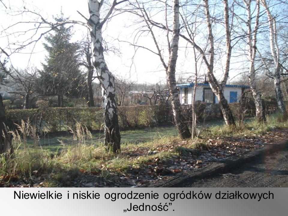 """Niewielkie i niskie ogrodzenie ogródków działkowych """"Jedność""""."""