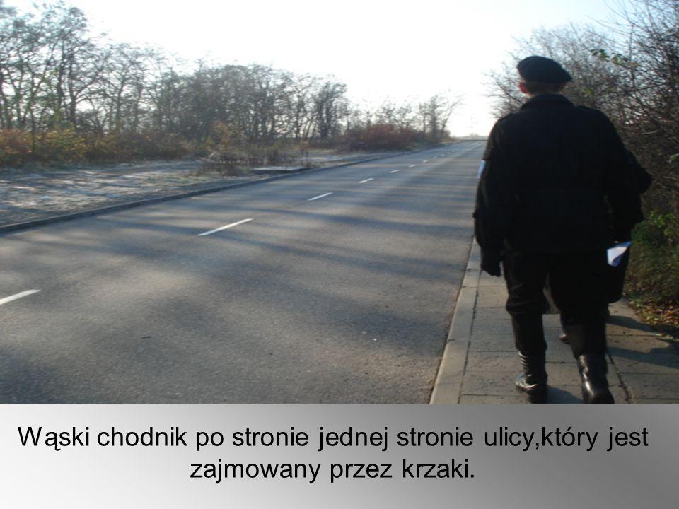 Wąski chodnik po stronie jednej stronie ulicy,który jest zajmowany przez krzaki.
