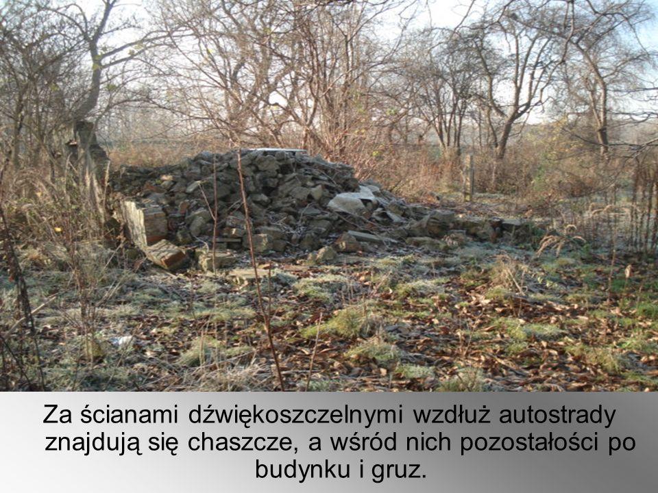 Za ścianami dźwiękoszczelnymi wzdłuż autostrady znajdują się chaszcze, a wśród nich pozostałości po budynku i gruz.