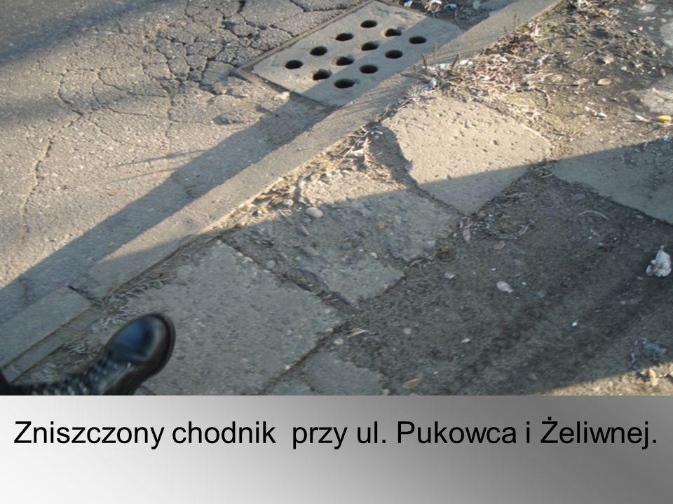 Zniszczony chodnik przy ul. Pukowca i Żeliwnej.