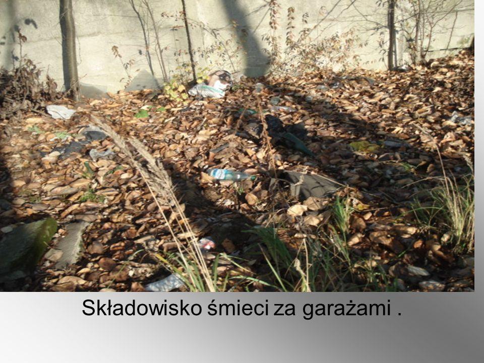Nie wywożone od dawna śmieci z kontenera przy ul.Kolońskiej (nieznana zawartość kontenera).