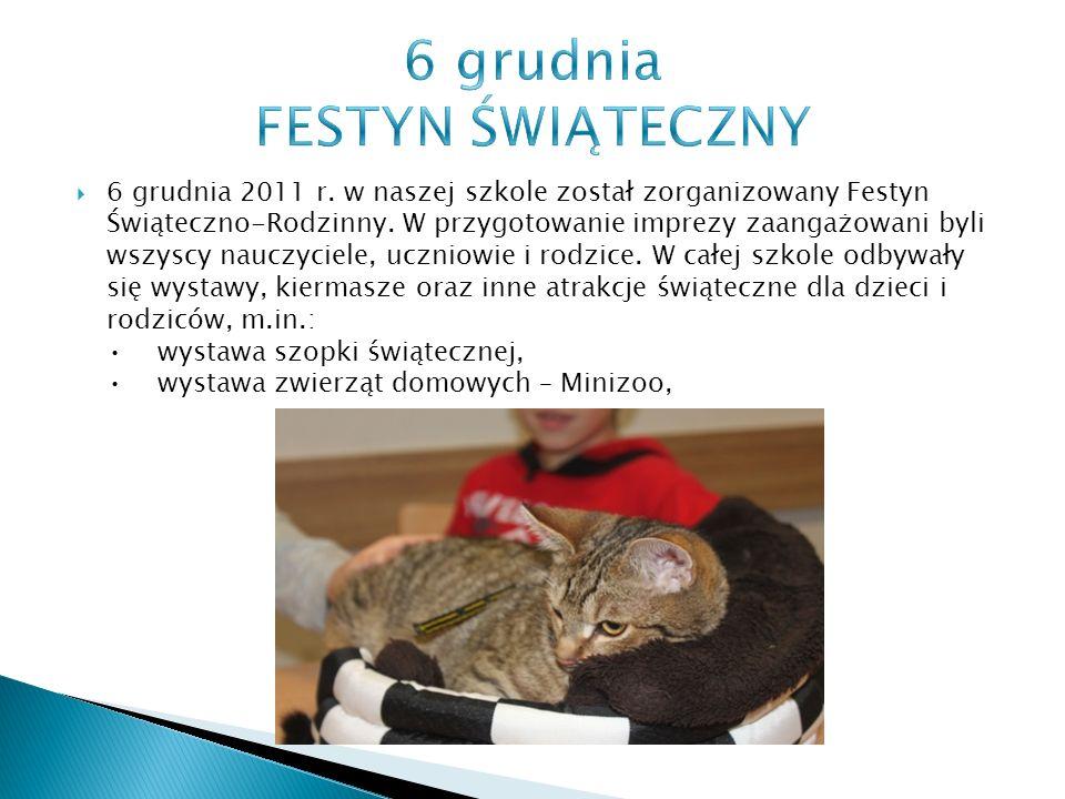  6 grudnia 2011 r. w naszej szkole został zorganizowany Festyn Świąteczno-Rodzinny.