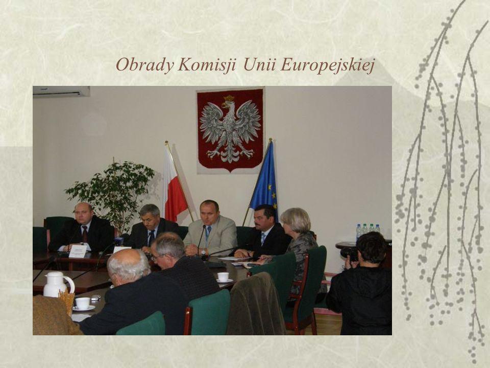 Obrady Komisji Unii Europejskiej