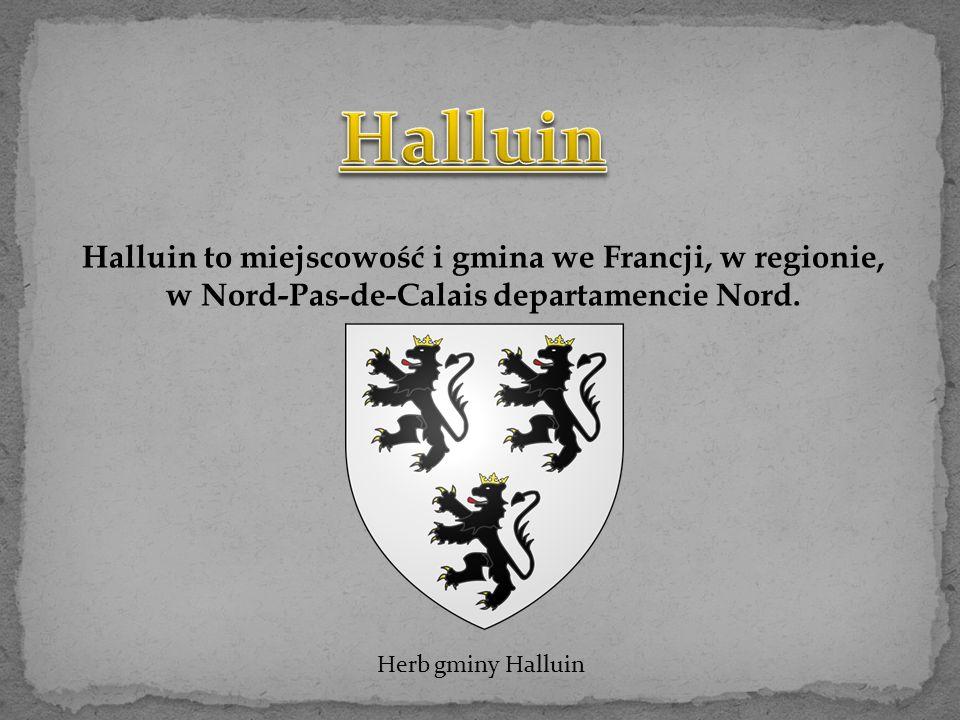 Nazwa Halluin pojawia si ę po raz pierwszy w 1066 roku, kiedy ziemia została przyznana przez hrabiego Baldwina w rozdziale Saint-Pierre de Lille.