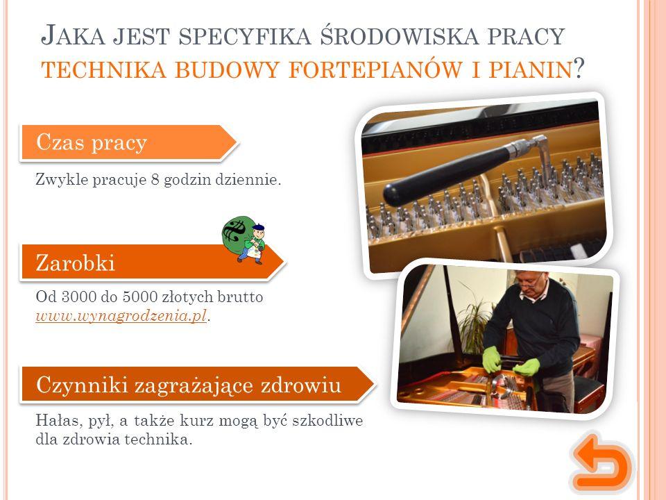 Czas pracy Zwykle pracuje 8 godzin dziennie. Zarobki Od 3000 do 5000 złotych brutto www.wynagrodzenia.pl www.wynagrodzenia.pl. Czynniki zagrażające zd