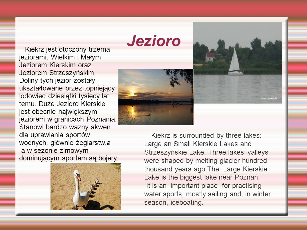 Jezioro Kiekrz is surrounded by three lakes: Large an Small Kierskie Lakes and Strzeszyńskie Lake. Three lakes' valleys were shaped by melting glacier