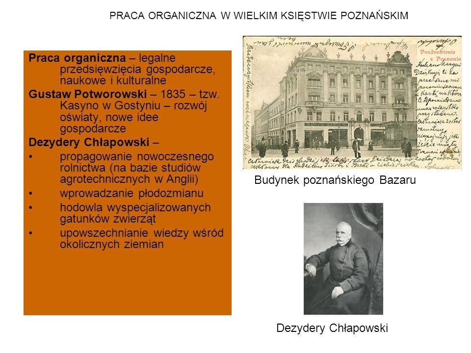 PRACA ORGANICZNA W WIELKIM KSIĘSTWIE POZNAŃSKIM Praca organiczna – legalne przedsięwzięcia gospodarcze, naukowe i kulturalne Gustaw Potworowski – 1835 – tzw.