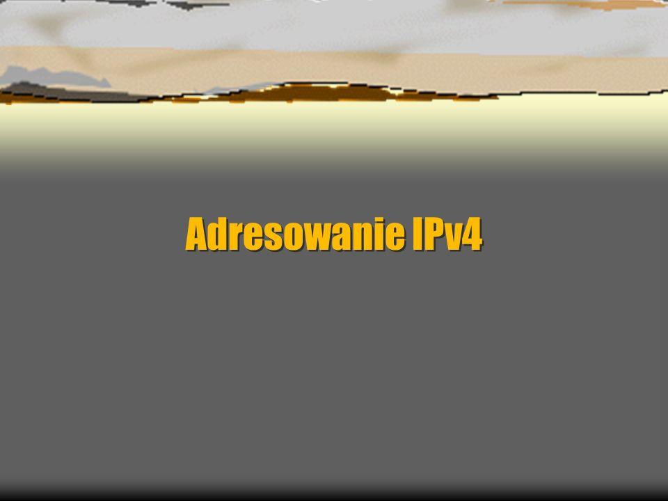 Adresowanie IPv4