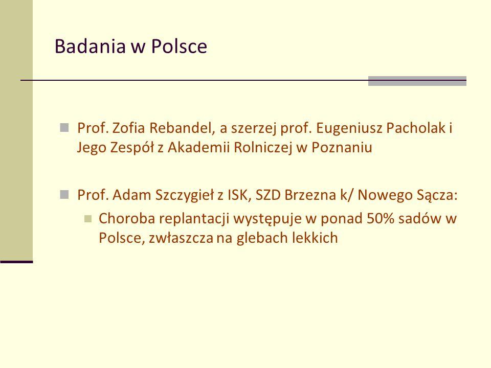 Badania w Polsce Prof. Zofia Rebandel, a szerzej prof.