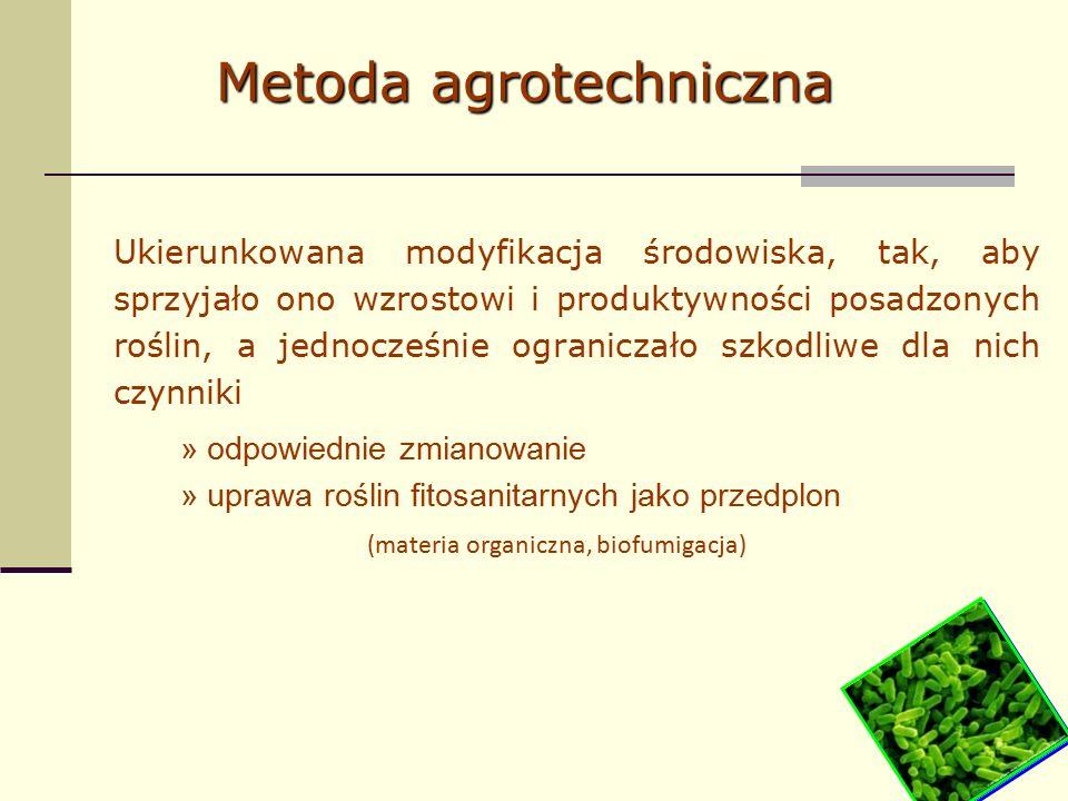 Ukierunkowana modyfikacja środowiska, tak, aby sprzyjało ono wzrostowi i produktywności posadzonych roślin, a jednocześnie ograniczało szkodliwe dla nich czynniki » odpowiednie zmianowanie » uprawa roślin fitosanitarnych jako przedplon (materia organiczna, biofumigacja) Metoda agrotechniczna