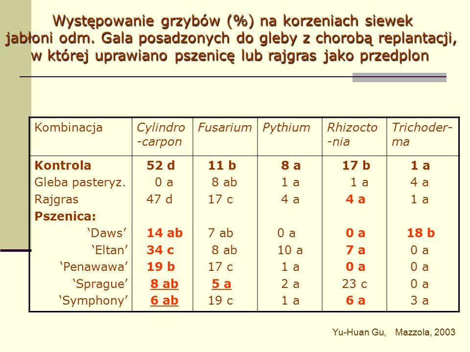 KombinacjaSad 1 (CV)Sad 2 (WCC) Kontrola Rajgras Pszenica: 'Daws' 'Eltan' 'Penawawa' 'Sprague' 'Symphony' 2,6 a* 4,9 b 6,8 c 13,6 e 8,3 d 7,1 cd 10,9 d 6,5 a* 7,9 a 21,4 c 13,5 b 20,8 d 17,4 c 17,5 c Wpływ uprawy pszenicy lub rajgrasu na populacje bakterii z rodzaju Pseudomonas w glebach z chorobą replantacji Yu-Huan Gu, Mazolla, 2003 *jtk x 10 5 g -1