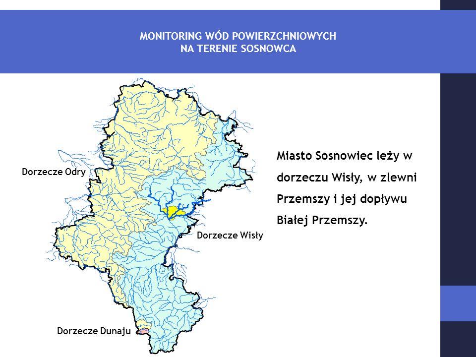 Miasto Sosnowiec leży w dorzeczu Wisły, w zlewni Przemszy i jej dopływu Białej Przemszy.