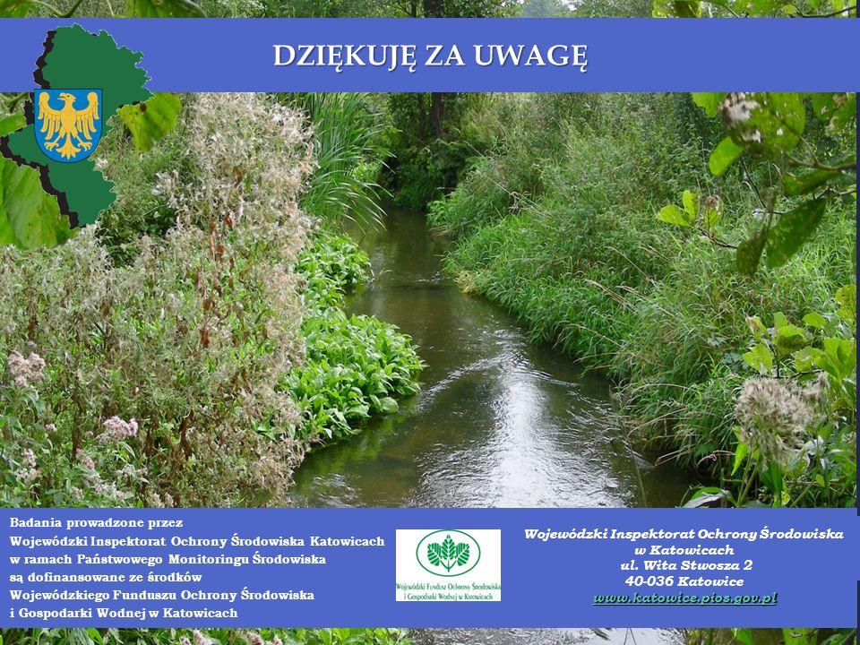 DZIĘKUJĘ ZA UWAGĘ Badania prowadzone przez Wojewódzki Inspektorat Ochrony Środowiska Katowicach w ramach Państwowego Monitoringu Środowiska są dofinansowane ze środków Wojewódzkiego Funduszu Ochrony Środowiska i Gospodarki Wodnej w Katowicach Wojewódzki Inspektorat Ochrony Środowiska w Katowicach ul.