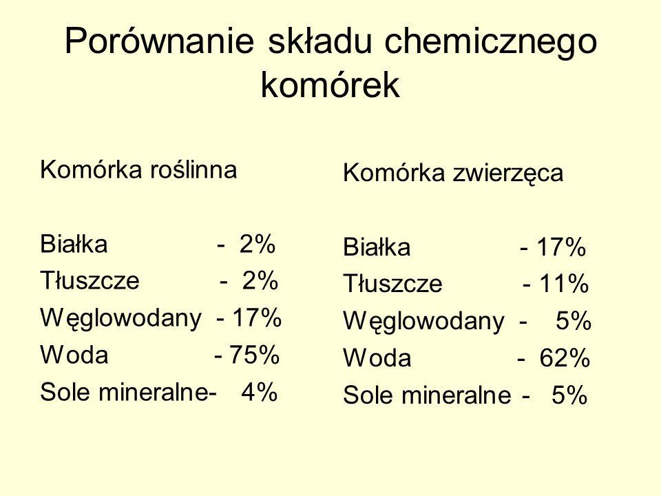 Porównanie składu chemicznego komórek Komórka roślinna Białka - 2% Tłuszcze - 2% Węglowodany - 17% Woda - 75% Sole mineralne- 4% Komórka zwierzęca Bia