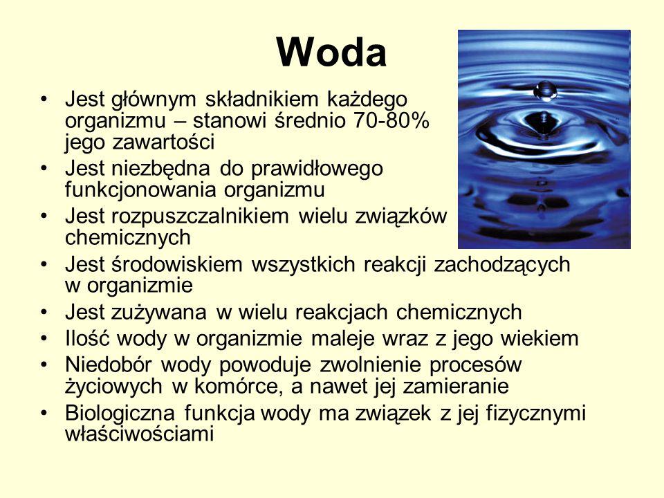 Woda Jest głównym składnikiem każdego organizmu – stanowi średnio 70-80% jego zawartości Jest niezbędna do prawidłowego funkcjonowania organizmu Jest