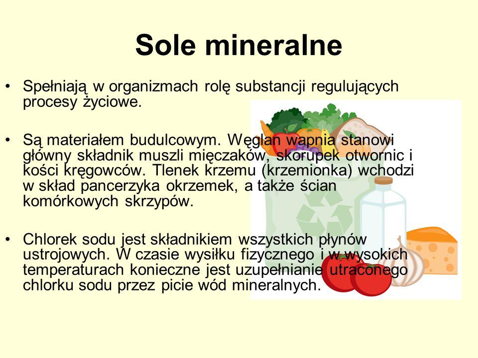Sole mineralne Spełniają w organizmach rolę substancji regulujących procesy życiowe. Są materiałem budulcowym. Węglan wapnia stanowi główny składnik m