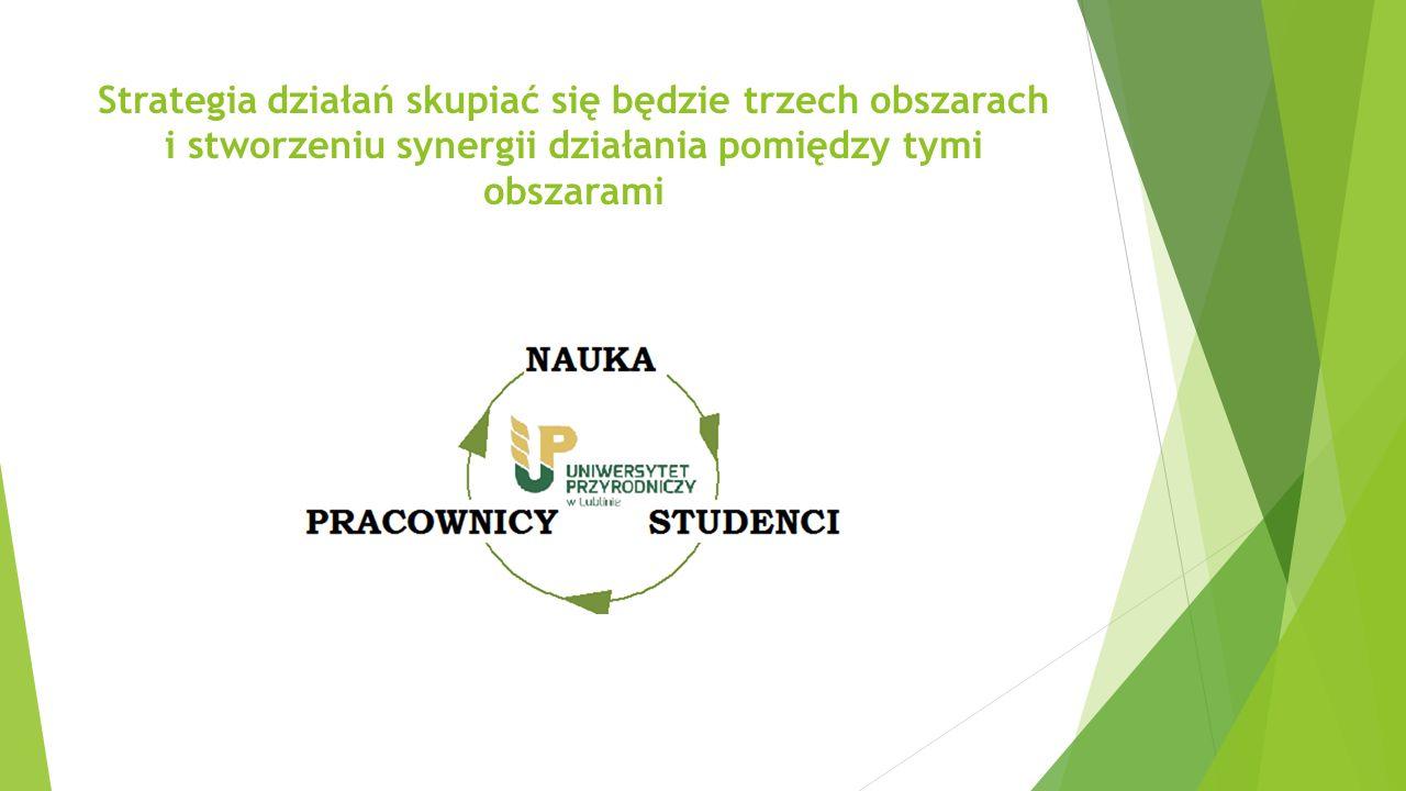Strategia działań skupiać się będzie trzech obszarach i stworzeniu synergii działania pomiędzy tymi obszarami