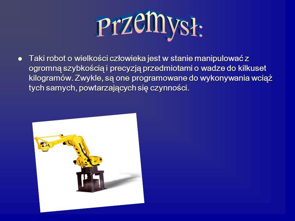 Taki robot o wielkości człowieka jest w stanie manipulować z ogromną szybkością i precyzją przedmiotami o wadze do kilkuset kilogramów.