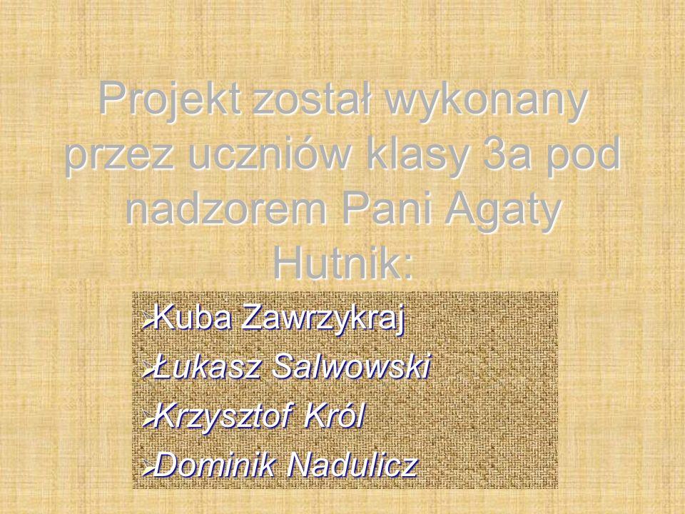 Projekt został wykonany przez uczniów klasy 3a pod nadzorem Pani Agaty Hutnik:  Kuba Zawrzykraj  Łukasz Salwowski  Krzysztof Król  Dominik Nadulicz