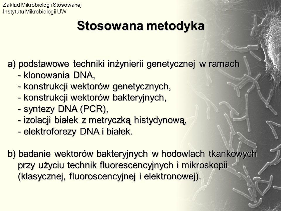 a) podstawowe techniki inżynierii genetycznej w ramach - klonowania DNA, - klonowania DNA, - konstrukcji wektorów genetycznych, - konstrukcji wektorów genetycznych, - konstrukcji wektorów bakteryjnych, - konstrukcji wektorów bakteryjnych, - syntezy DNA (PCR), - syntezy DNA (PCR), - izolacji białek z metryczką histydynową, - izolacji białek z metryczką histydynową, - elektroforezy DNA i białek.