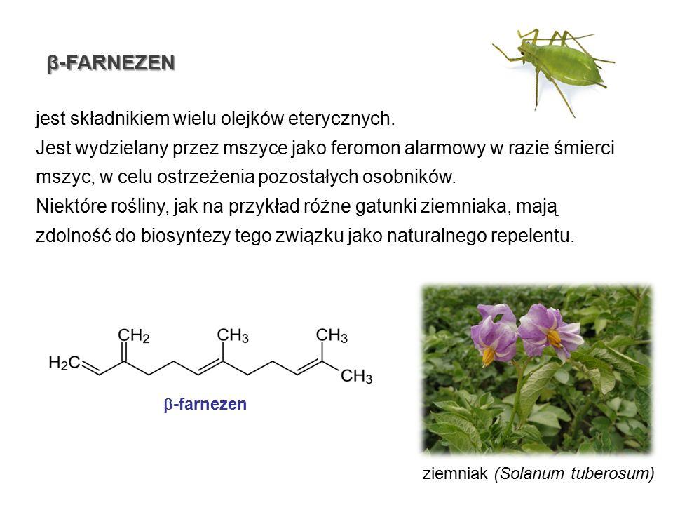 β-FARNEZEN jest składnikiem wielu olejków eterycznych. Jest wydzielany przez mszyce jako feromon alarmowy w razie śmierci mszyc, w celu ostrzeżenia po