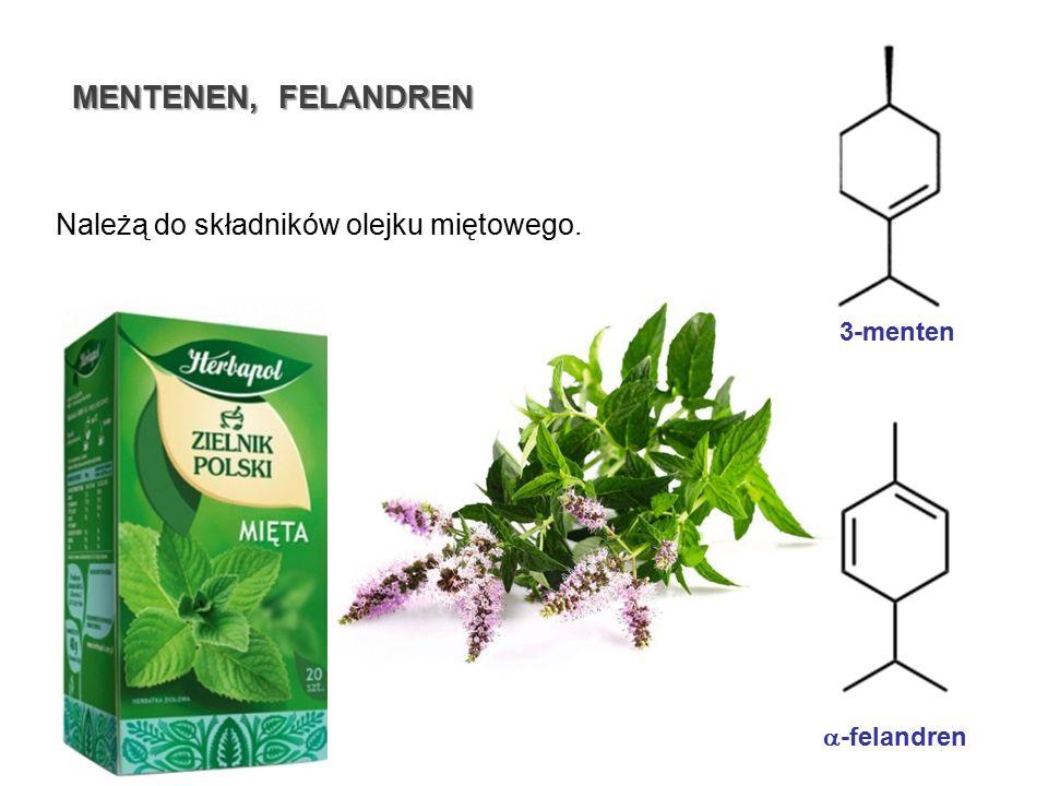 MENTENEN, FELANDREN 3-menten Należą do składników olejku miętowego.  -felandren