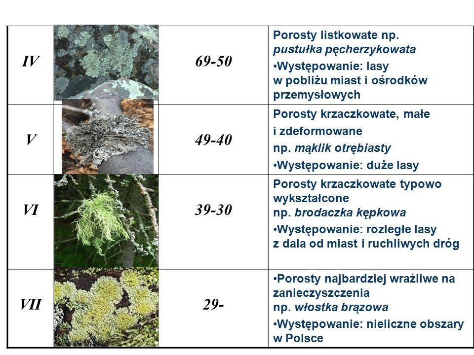 IV69-50 Porosty listkowate np. pustułka pęcherzykowata Występowanie: lasy w pobliżu miast i ośrodków przemysłowych V49-40 Porosty krzaczkowate, małe i