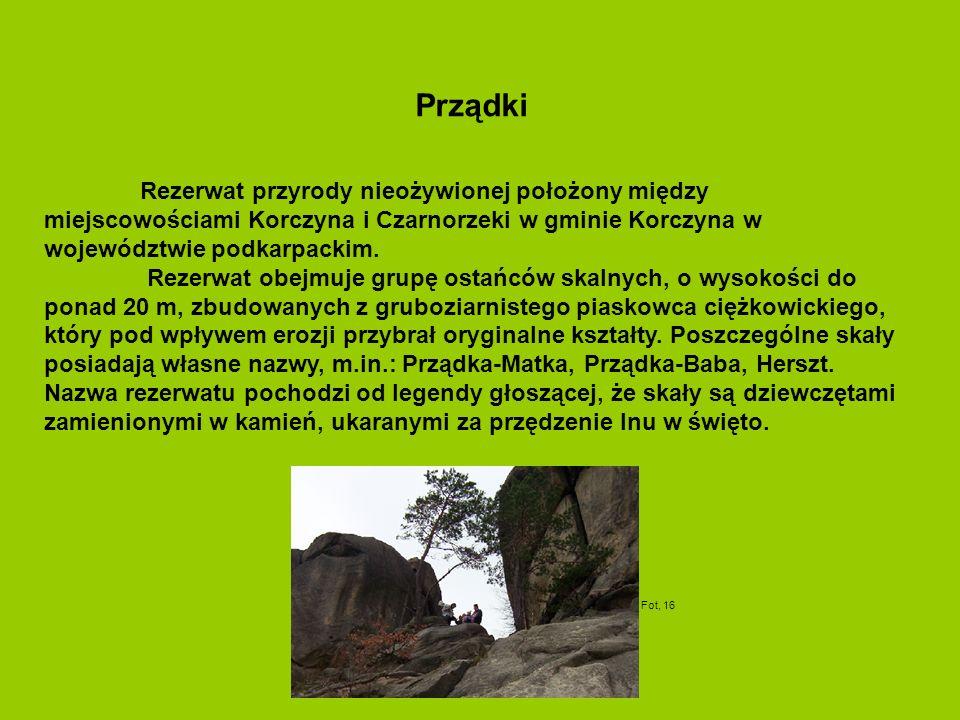 Rezerwat przyrody nieożywionej położony między miejscowościami Korczyna i Czarnorzeki w gminie Korczyna w województwie podkarpackim. Rezerwat obejmuje