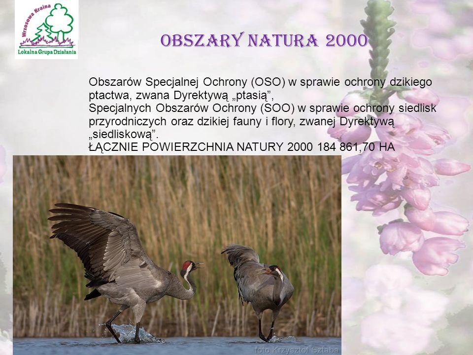""""""" Kawałek razowego chleba i dzban wody wystarczą, by zaspokoić ludzki głód,lecz nasza cywilizacja stworzyła sztukę kulinarną.' Fizjologia Małżeństwa My tworzymy wędliny … OBSZARY NATURA 2000 Obszarów Specjalnej Ochrony (OSO) w sprawie ochrony dzikiego ptactwa, zwana Dyrektywą """"ptasią , Specjalnych Obszarów Ochrony (SOO) w sprawie ochrony siedlisk przyrodniczych oraz dzikiej fauny i flory, zwanej Dyrektywą """"siedliskową ."""