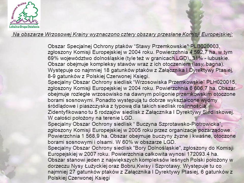 """"""" Kawałek razowego chleba i dzban wody wystarczą, by zaspokoić ludzki głód,lecz nasza cywilizacja stworzyła sztukę kulinarną.' Fizjologia Małżeństwa My tworzymy wędliny … Na obszarze Wrzosowej Krainy wyznaczono cztery obszary przesłane Komisji Europejskiej: Obszar Specjalnej Ochrony ptaków Stawy Przemkowskie PLB020003, zgłoszony Komisji Europejskiej w 2004 roku."""