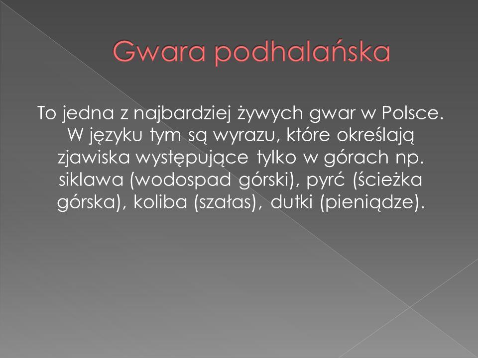 To jedna z najbardziej żywych gwar w Polsce. W języku tym są wyrazu, które określają zjawiska występujące tylko w górach np. siklawa (wodospad górski)