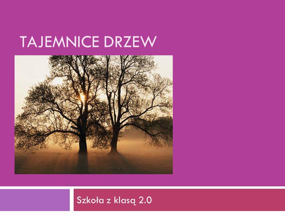 TAJEMNICE DRZEW Szkoła z klasą 2.0