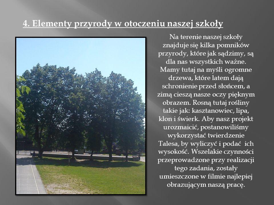 4. Elementy przyrody w otoczeniu naszej szkoły Na terenie naszej szkoły znajduje się kilka pomników przyrody, które jak sądzimy, są dla nas wszystkich