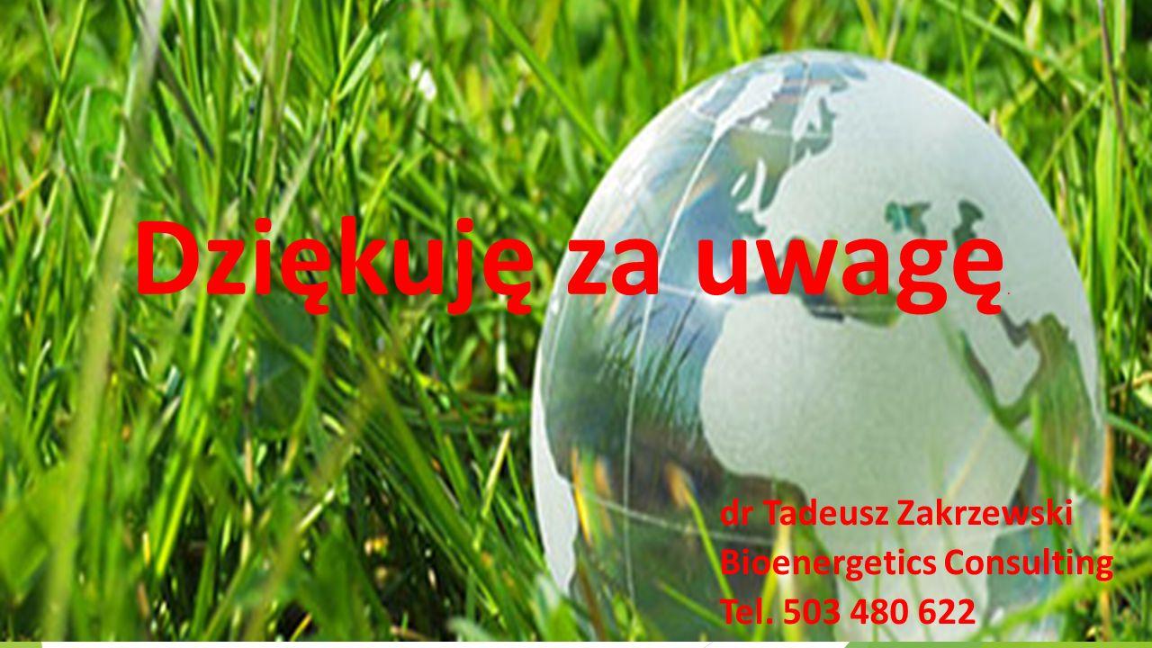 Dziękuję za uwagę. dr Tadeusz Zakrzewski Bioenergetics Consulting Tel. 503 480 622