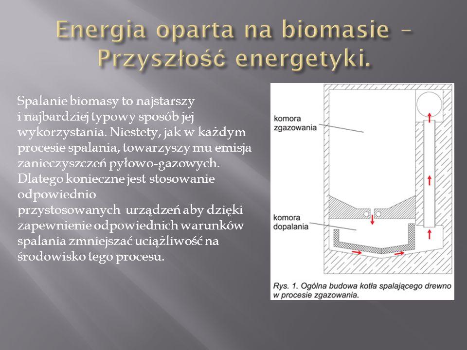 Spalanie biomasy to najstarszy i najbardziej typowy sposób jej wykorzystania.