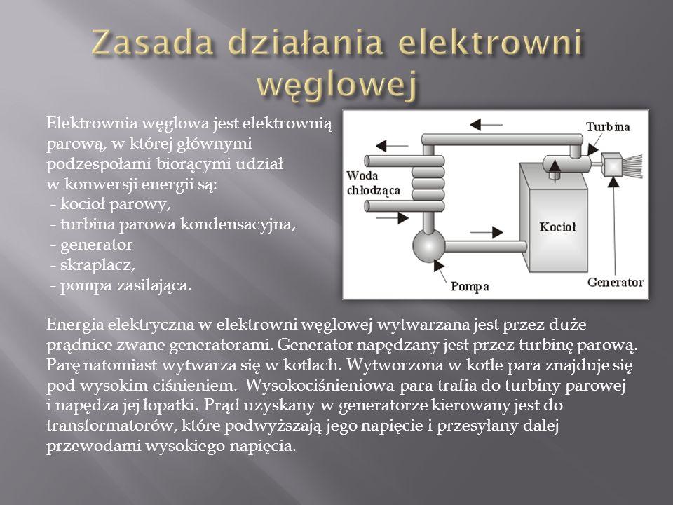 Elektrownia węglowa jest elektrownią parową, w której głównymi podzespołami biorącymi udział w konwersji energii są: - kocioł parowy, - turbina parowa kondensacyjna, - generator - skraplacz, - pompa zasilająca.